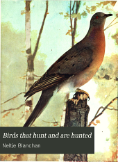 Birds that Hunt and are Hunted: Volume 2