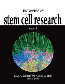 Encyclopedia of Stem Cell Research PDF