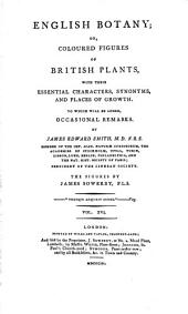 English Botany: Or, Coloured Figures of British Plants, with Their Essential Characters, Synonyms, and Places of Growth, Volume 16