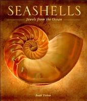 Seashells PDF