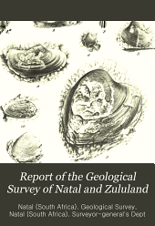Report of the Geological Survey of Natal and Zululand: first-third and final, Volume 3