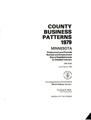 County Business Patterns  Minnesota PDF