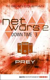 netwars 2 - Down Time 3: Prey: Thriller