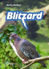 Blitzard