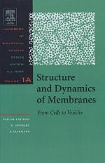 Structure and Dynamics of Membranes