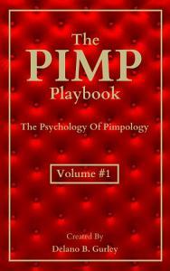 The PIMP Playbook PDF