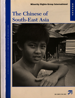 The Chinese of South East Asia PDF