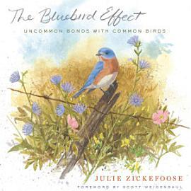 The Bluebird Effect