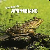 How they live... Amphibians: Learn All There Is to Know About These Animals!