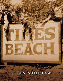 Download Times Beach Book