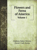 Flowers and Ferns of America