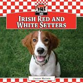 Irish Red and White Setters