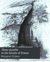 Three Months in the Forests of France: A Pilgrimage in Search of Vestiges of the Irish Saints in France