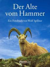Der Alte vom Hammer: Eine Bilderbuchgeschichte aus den Bergen der Schweiz