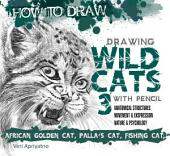 Drawing Wild Cat 3 with Pencil
