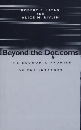 Beyond the Dot coms PDF