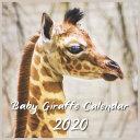 Download Baby Giraffe Calendar 2020 Book
