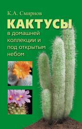 Кактусы в домашней коллекции и под открытым небом