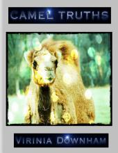 Camel Truths