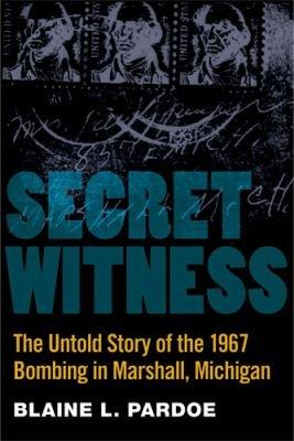 Download Secret Witness Book