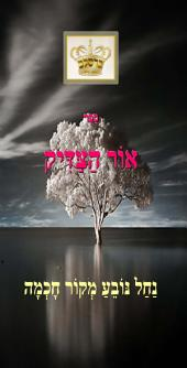 Ohr Hatzadik the Light of the Tzadik of Breslov.