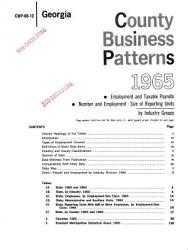 County Business Patterns Georgia Book PDF