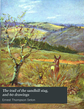 The Trail of the Sandhill Stag: And 60 Drawings
