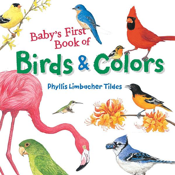 Download Baby s Birds and Colors Book