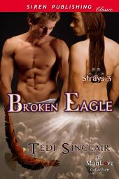 Broken Eagle [Strays 3]
