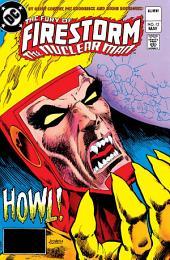 The Fury of Firestorm (1982-) #12