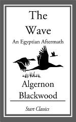 The Wave: An Egyptian Aftermath