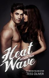 Heat Wave Volume 2: Standalone Erotic Romance Novella