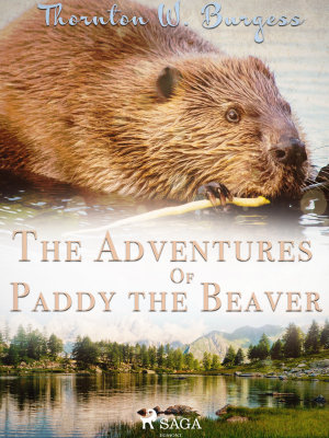 The Adventures of Paddy the Beaver PDF