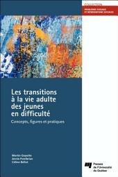 Les transitions à la vie adulte des jeunes en difficulté: Concepts, figures et pratiques