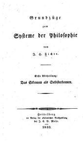 Grundzüge zum System der Philosophie