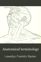 Anatomical Terminology: With Special Reference to the <b>