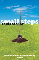Small Steps PDF