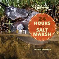 24 Hours in a Salt Marsh PDF