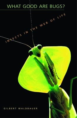 What Good Are Bugs  Insects in the Web of Life PDF