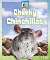 Cheeky Chinchillas