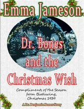 Dr. Bones and the Christmas Wish: Magic of Cornwall #1