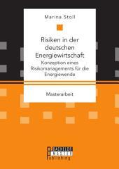 Risiken in der deutschen Energiewirtschaft: Konzeption eines Risikomanagements für die Energiewende