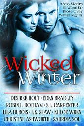Wicked Winter Box Set