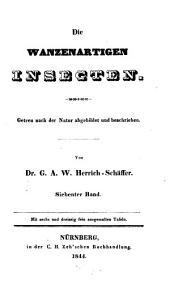 Die wanzenartigen Insecten: Band 7