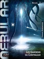 Nebular Recueil 7 - Les Gardiens du Continuum: Épisodes 31 à 34