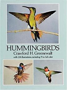 Hummingbirds PDF