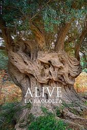Alive: La Raccolta