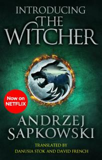 Introducing The Witcher Book