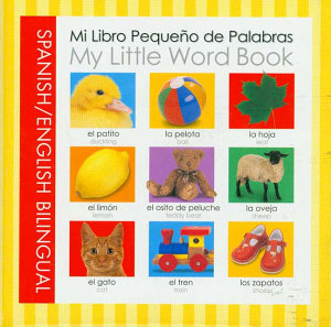 Playtime Learning  My Little Word Bi ling