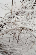 Scenic Winter Photo Journal Snow Covered Branches